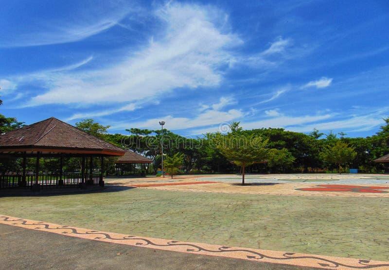 印度尼西亚马奇尼颂巴拉望加萨苏拉威西苏拉威西拉坦花园 免版税库存照片