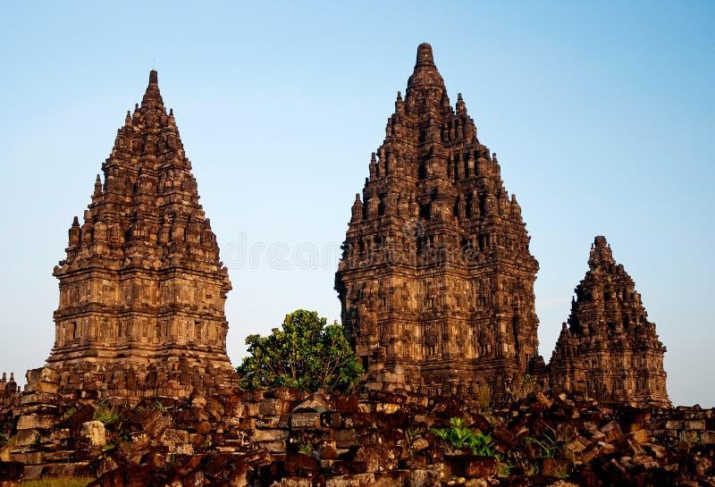 印度尼西亚Java prambanan寺庙日惹 图库摄影