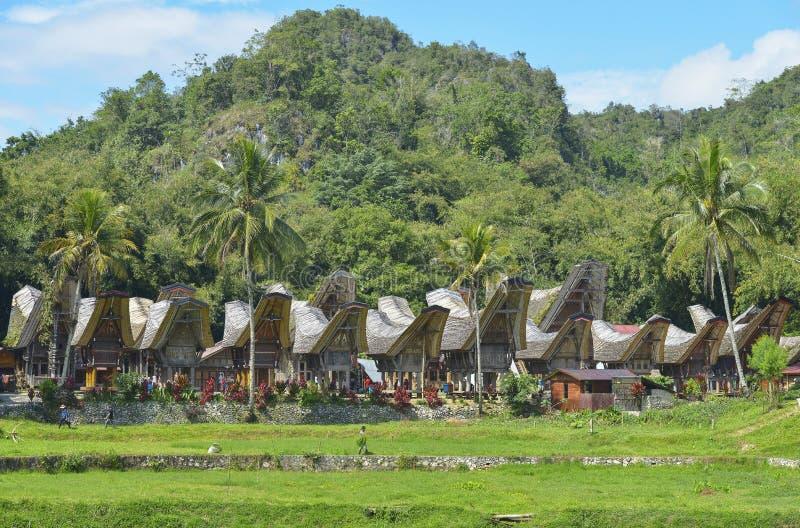 印度尼西亚sulawesi tana toraja 免版税库存照片