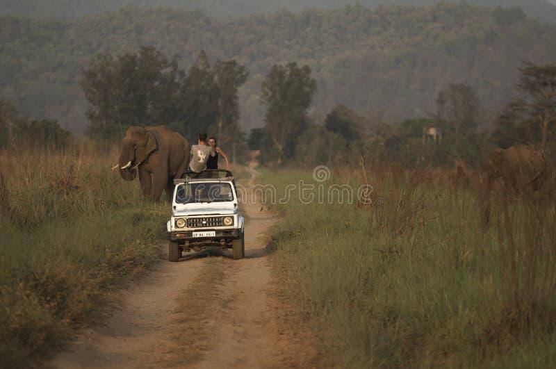 印度徒步旅行队 库存图片