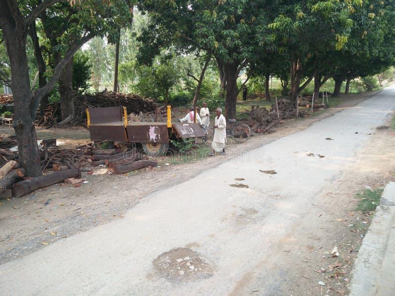 印度村庄路边图象和人 免版税库存照片