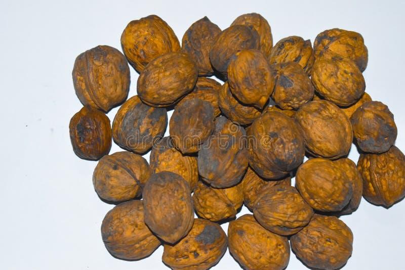 印度核桃-核桃是类的所有树坚果  库存照片