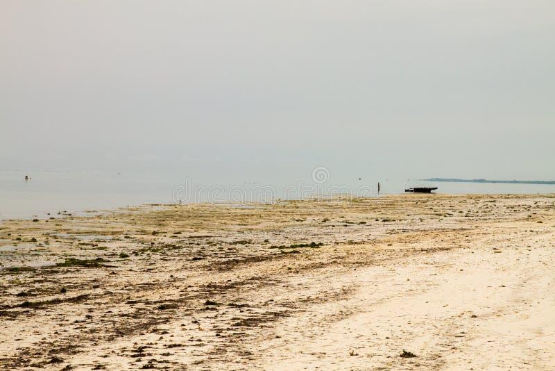 印度洋桑给巴尔香料海岛  库存照片