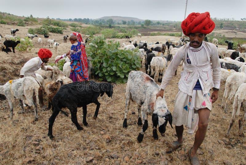 印度游牧人人 库存图片