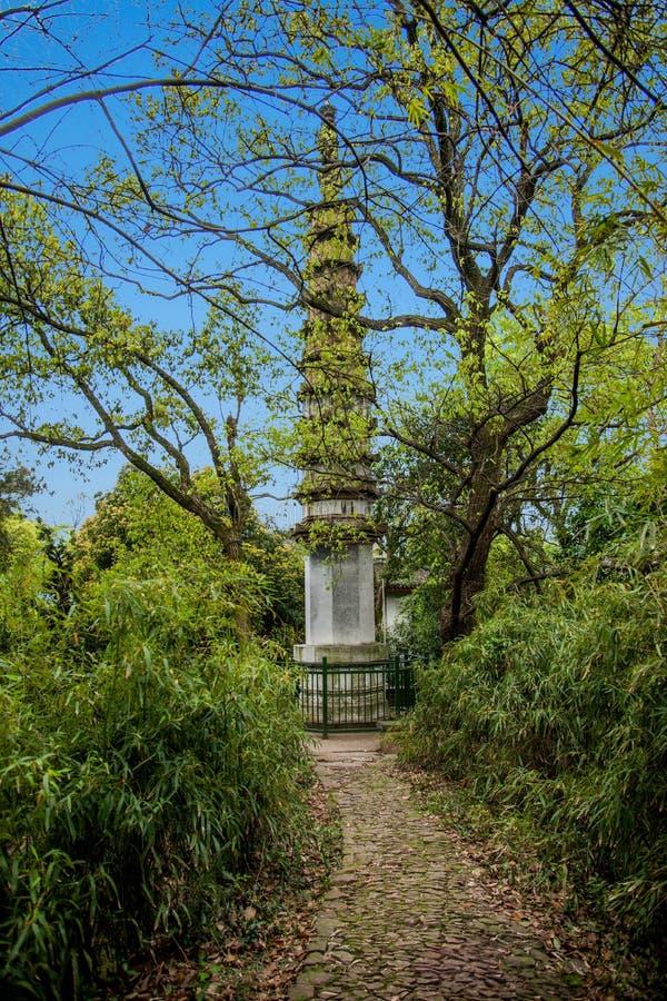 印度的杭州西湖封印的西湖由塔的 库存图片