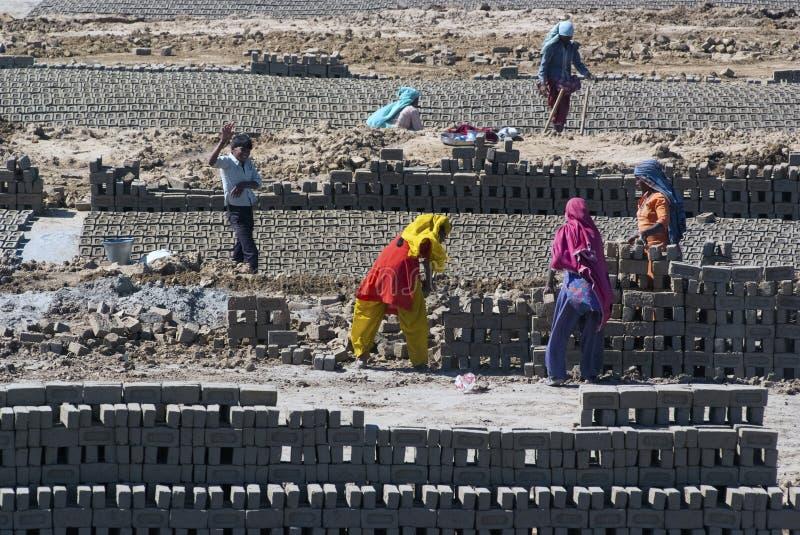 印度的砖工厂 库存照片