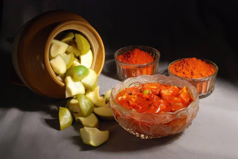 印度芒果腌汁 库存照片