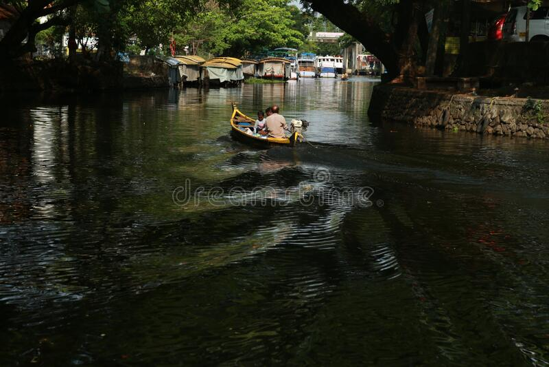 印度阿拉普扎人运 免版税图库摄影