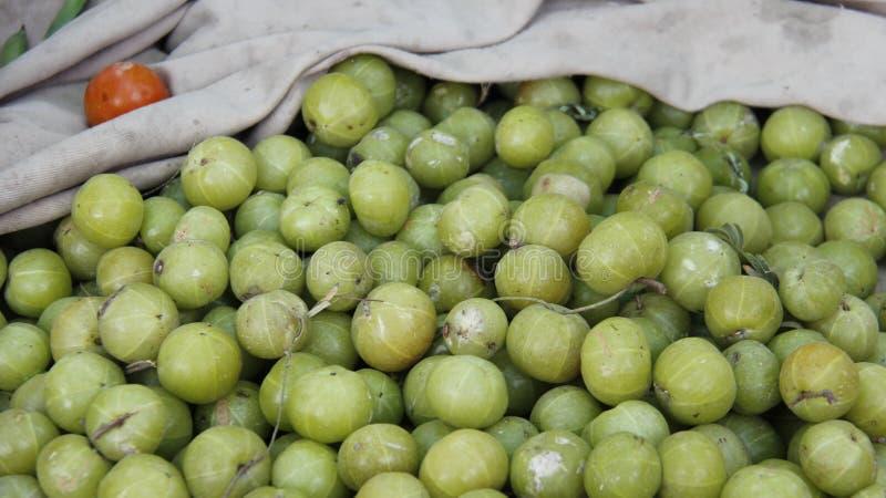 印度鹅莓 在地方市场上的草本 免版税库存图片