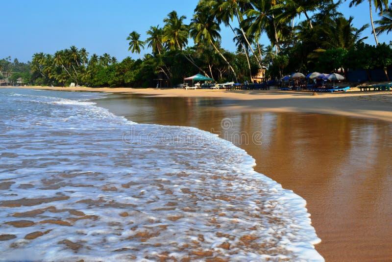 印度洋海岸线 免版税库存图片
