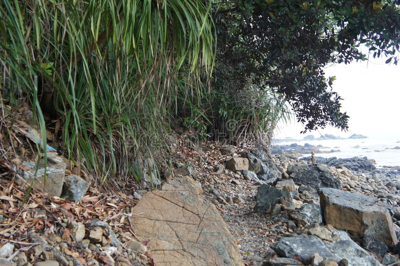 印度洋的沿海小条的一个美妙的风景 库存照片