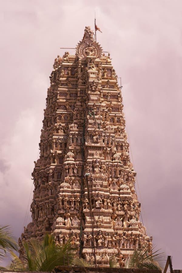 印度lanka matale sri寺庙 库存照片