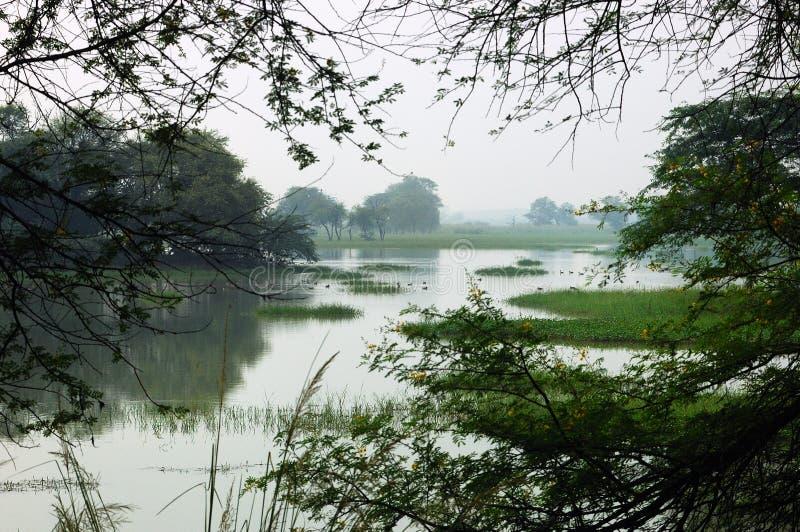 印度sultanpur 免版税库存照片