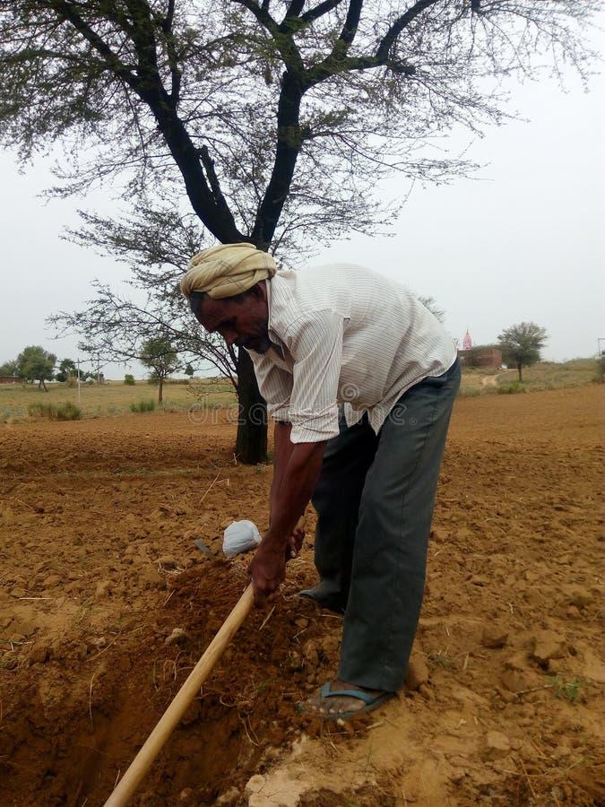 印第安农夫 库存照片