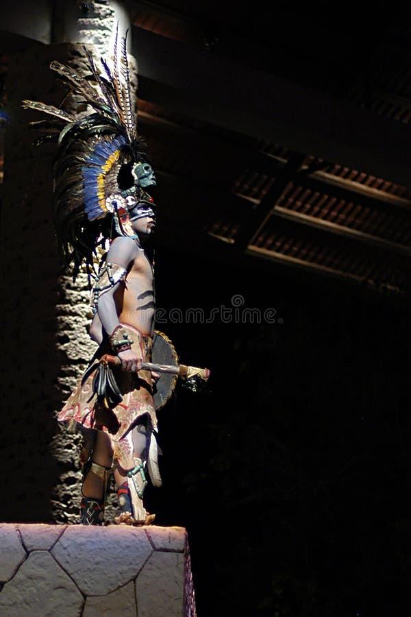 印第安战士 库存照片