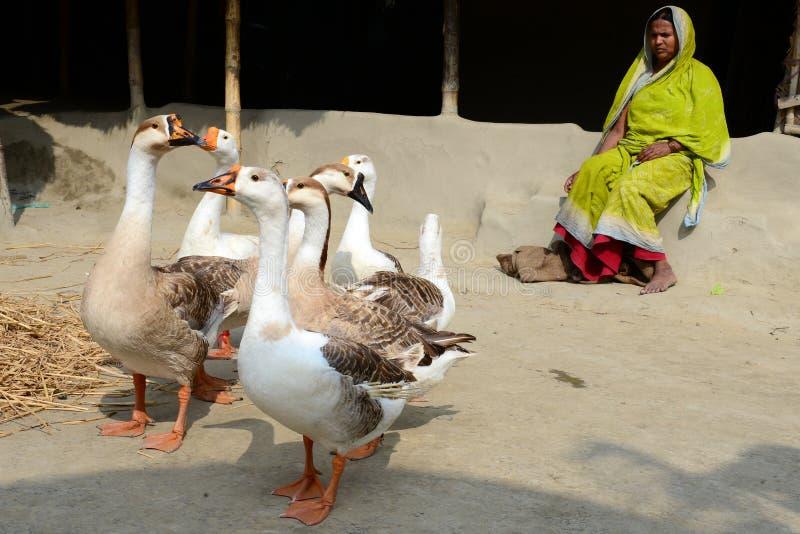 印第安村庄 免版税图库摄影