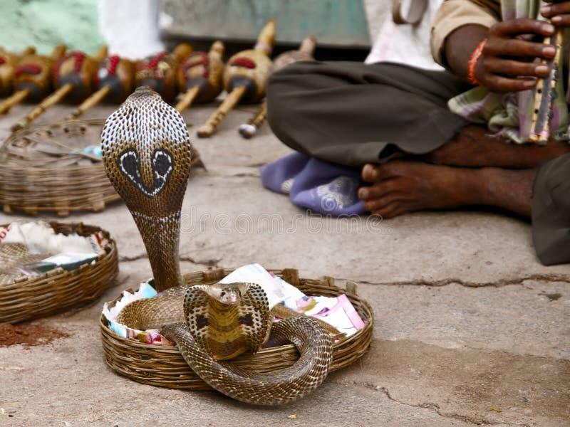 印第安祈求国家s显示蛇 库存照片