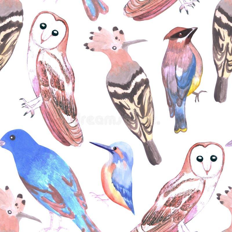 危险的鸟无缝的水彩背景 库存例证