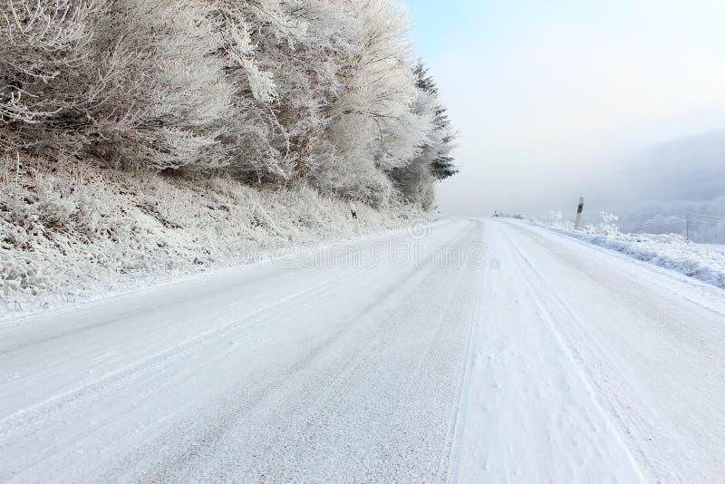 危险结冰的路 免版税库存照片