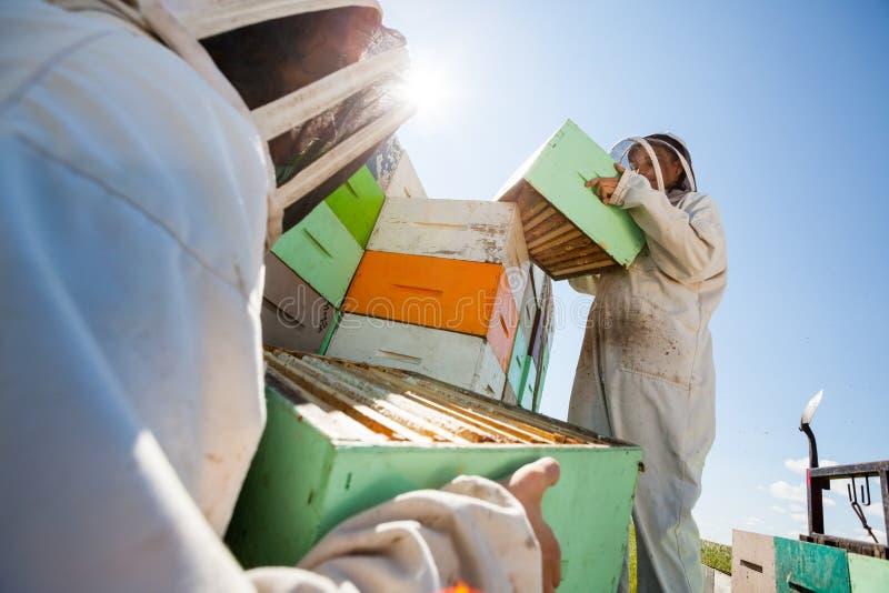 卸载从卡车的蜂农蜂窝箱子 免版税库存照片