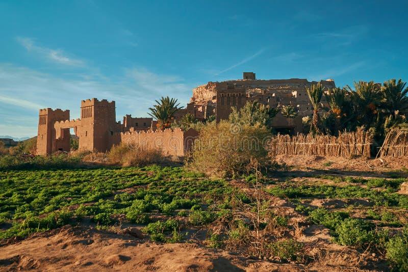 历史的ksar Ait有绿色领域的本Haddou由日落 免版税库存图片