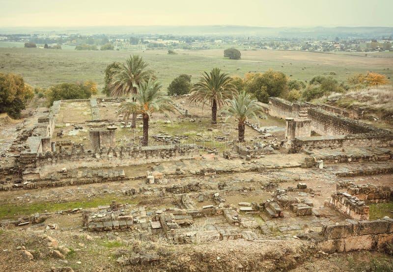 历史被破坏的摩尔人中世纪城市麦地那Azahara在安达卢西亚,西班牙风景  科教文组织遗产站点 免版税图库摄影