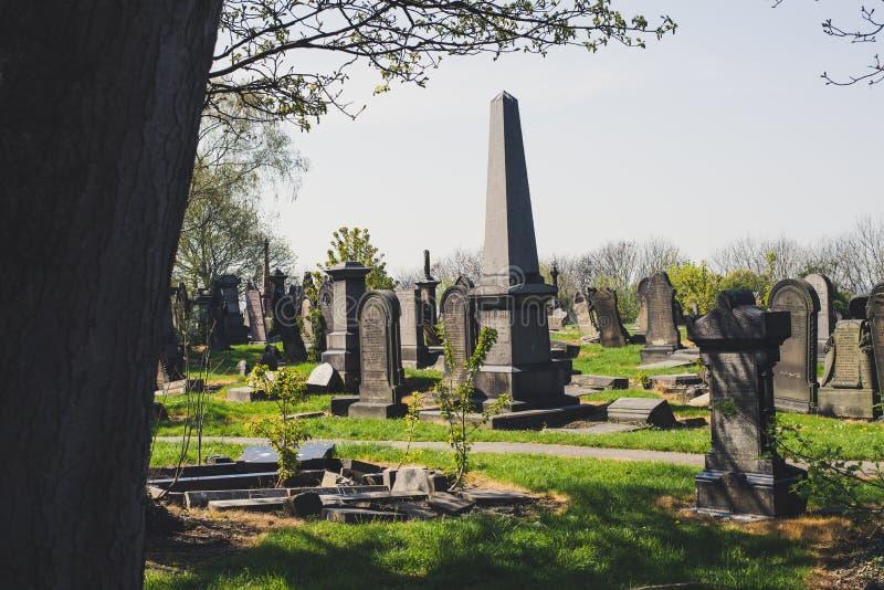 历史cementery在自然公园 免版税库存图片