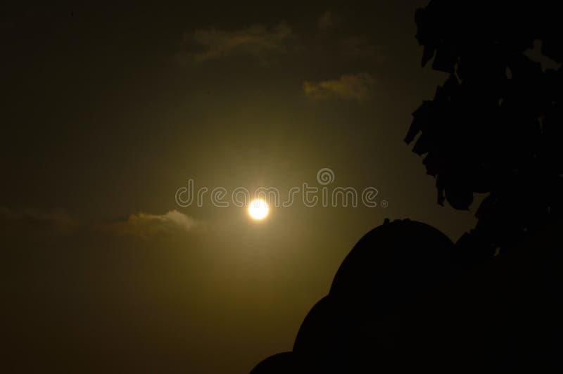 巴厘岛与冲浪板的晚上太阳 库存图片