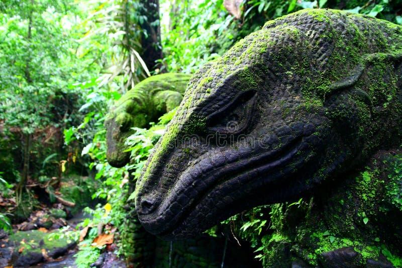 巴厘岛异乎寻常的森林  免版税图库摄影