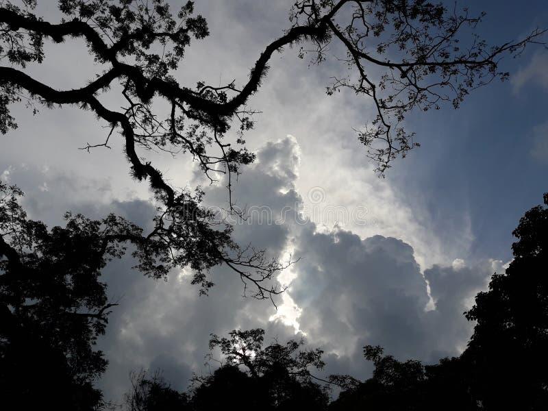厚实的云彩在晚上 免版税库存图片