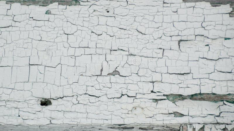 厚实的白色削皮崩裂了与在底下绿色的油漆 免版税库存照片