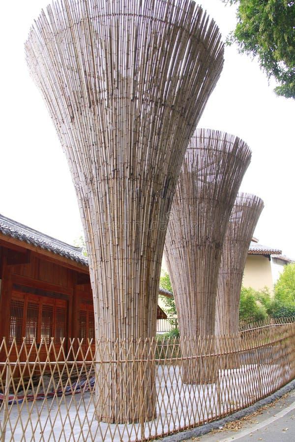 厚实的竹管 库存照片