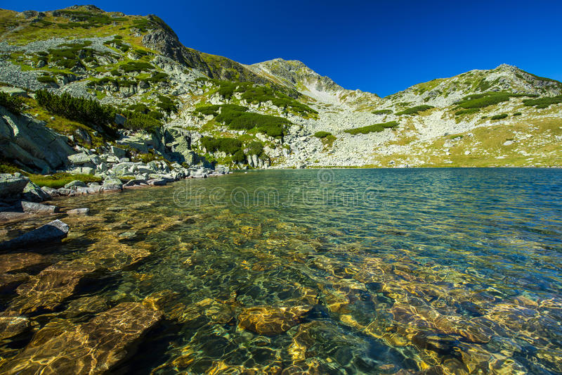 原始冰川湖在阿尔卑斯 免版税库存照片