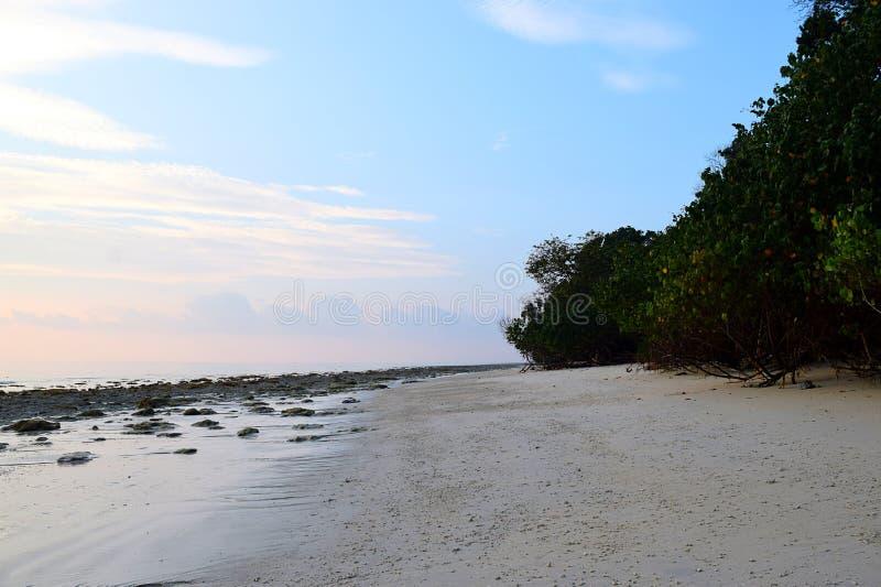 原始和平静的白桑迪和多岩石的海滩与沿海种植园- Kalapathar, Havelock,安达曼-自然本底 免版税库存照片