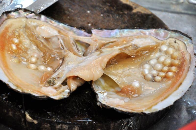 原始珍珠层的珍珠 免版税库存图片