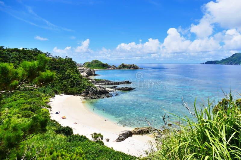 原始白色海滩、绿叶、绿松石海和深蓝色晴朗的天空的热带天堂在座间味,冲绳岛,日本 免版税库存图片