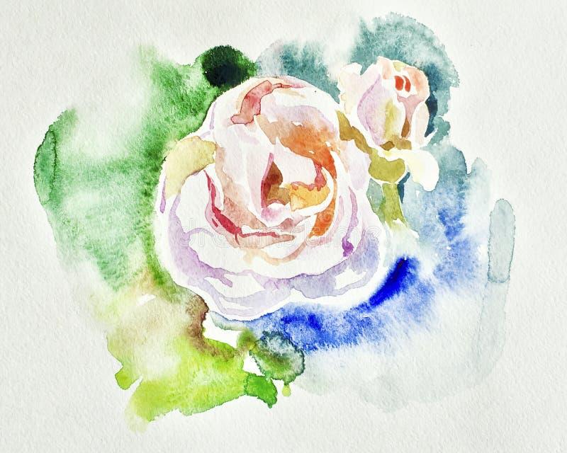 原始的美好的水彩白色玫瑰例证 皇族释放例证