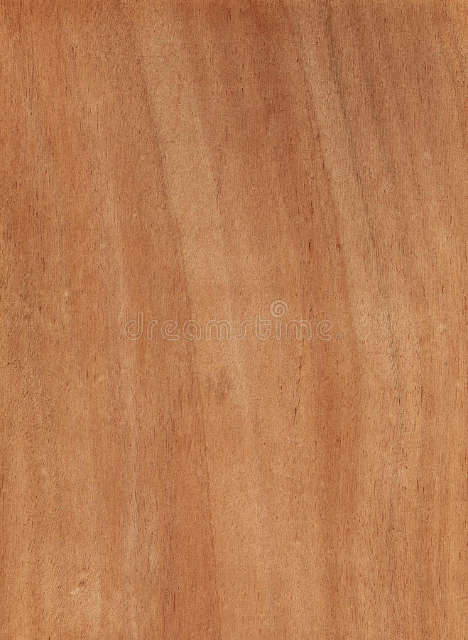 Download 原木 库存图片. 图片 包括有 特写镜头, 林业, 木柴, 装饰, 会议室, 抽象, 谷物, 空白的, 剪切 - 22351159