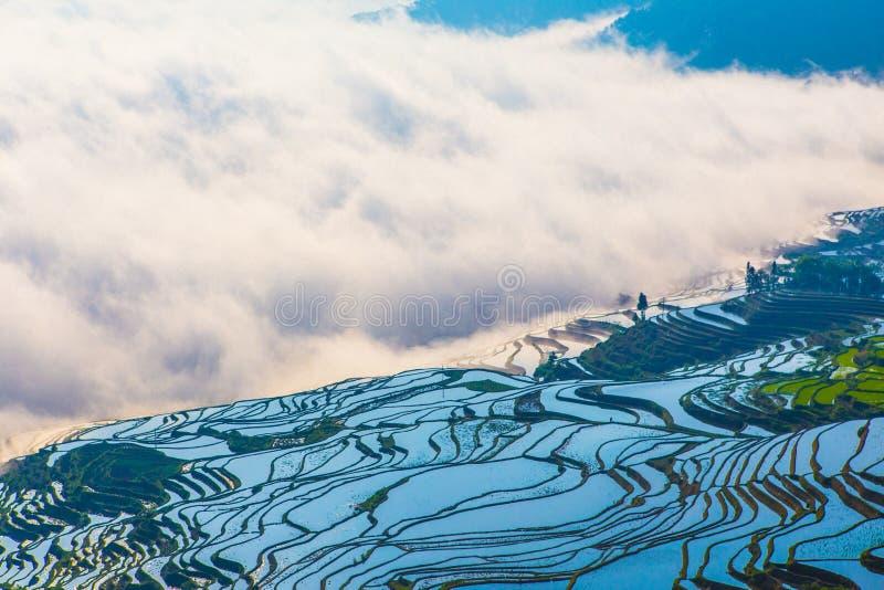 原阳米大阳台在中国 库存照片