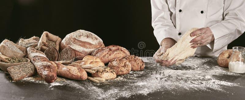 厨师揉的面团,当做专长面包时 库存图片