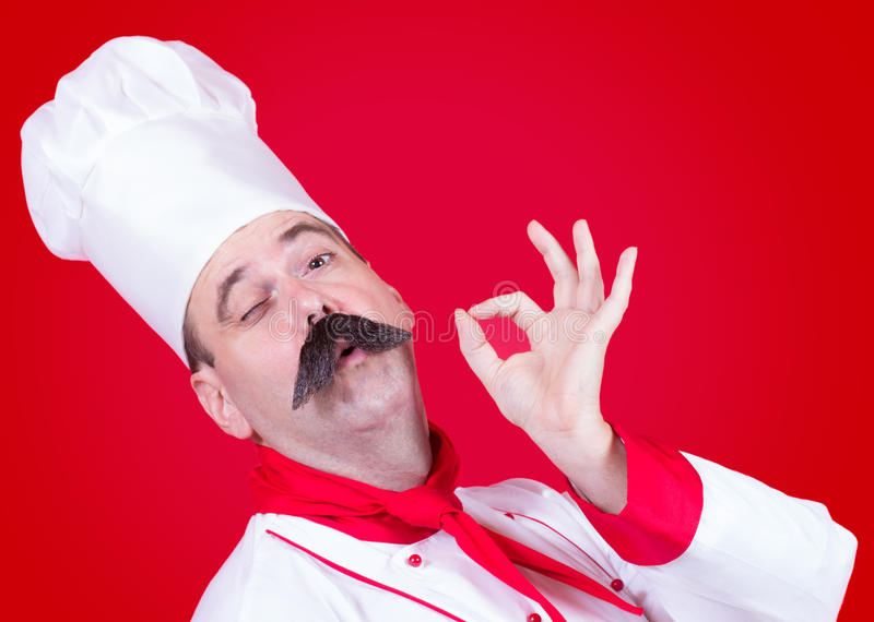厨师纵向 免版税库存图片