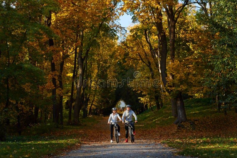 去为自行车的愉快的年轻夫妇在一秋天天乘坐在公园 免版税库存照片