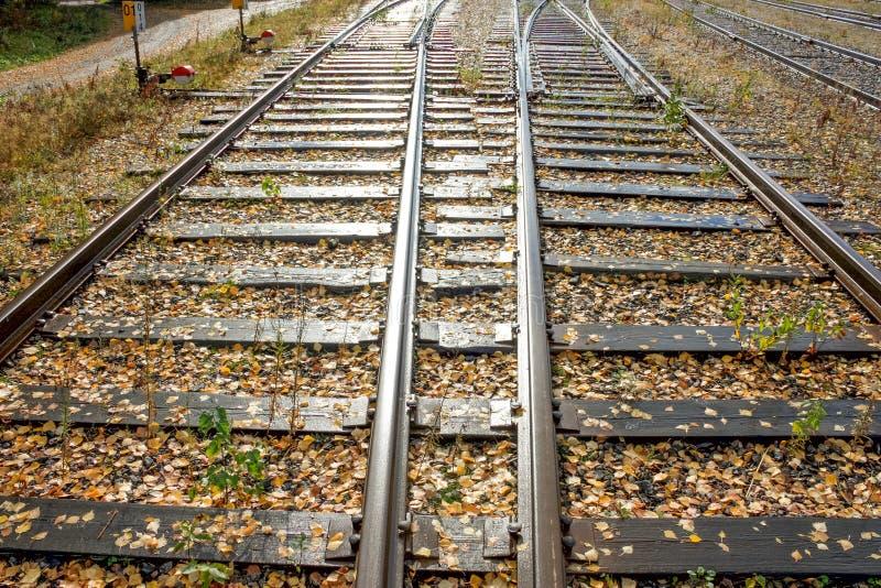 去好日子透视的两个铁路线  库存图片