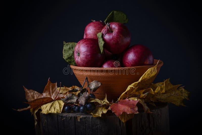 去年秋天苹果 库存照片