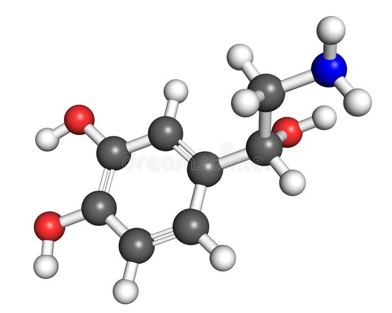 去甲肾上腺素分子 库存例证