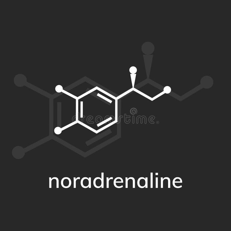 去甲肾上腺素化学式 向量例证