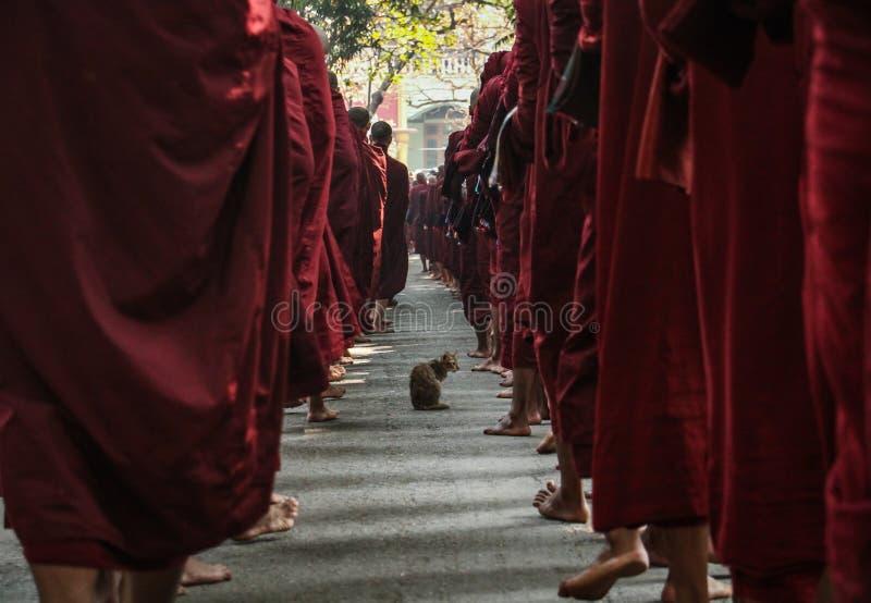 去的修士在收集他们的施舍以后吃,曼德勒,曼德勒地区,缅甸 免版税图库摄影