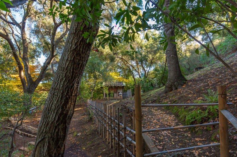 去老日本房子的道路在森林里在秋天期间 库存图片