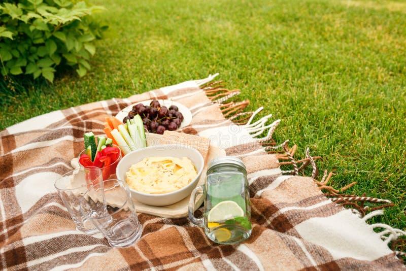 去野餐在草在公园,一方格的棕色格子花呢披肩snac的 免版税库存照片