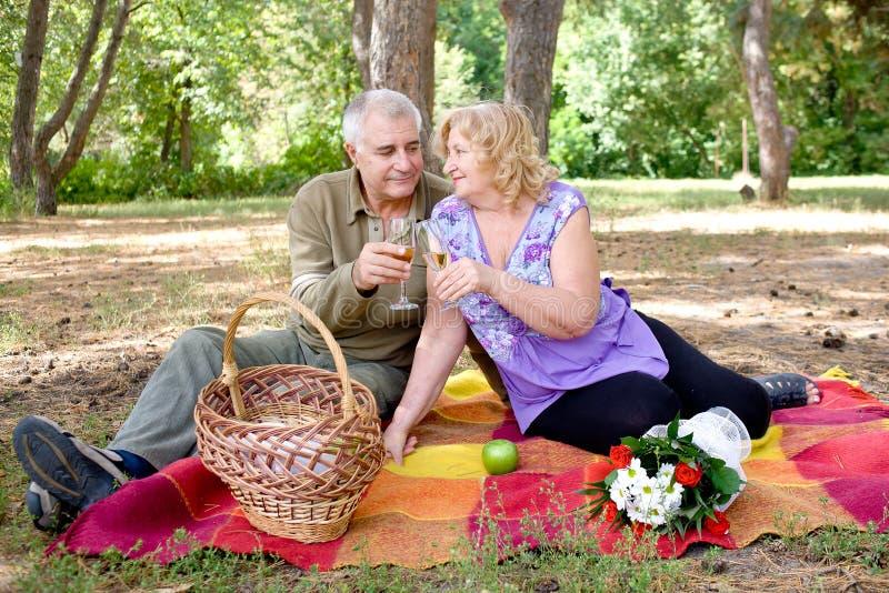 去野餐夫妇的年长的人 免版税库存图片